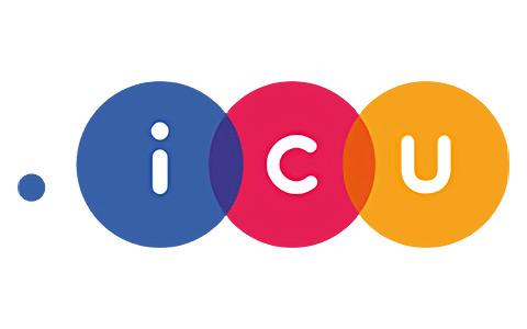 icu域名